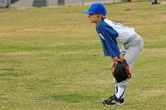 Little League Stock Photos