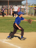 Little league baseball first baseman royalty free stock photo