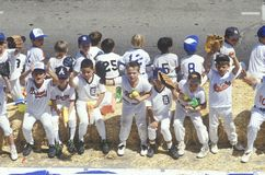 Little League Baseball game Stock Images