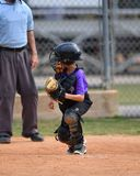 Young boy playing Little League Baseball. Little league baseball player during a YMCA baseball game. Cute boy in blue and grey uniform royalty free stock photography