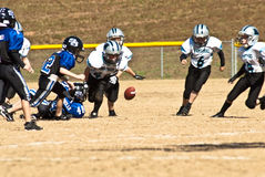 Little League Football/Loose Ball Royalty Free Stock Image