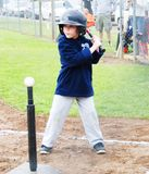 T-Ball player at bat. Royalty Free Stock Photo
