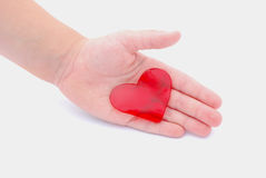 I give you my heart concept Royalty Free Stock Photography