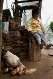 A little Lepcha boy and hen family Royalty Free Stock Photos