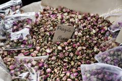 Provence Rose buds Royalty Free Stock Photo