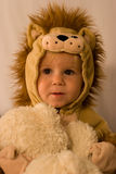 Little Lion. Image of 14 month old boy in a lion costume preparing for Halloween Royalty Free Stock Photo