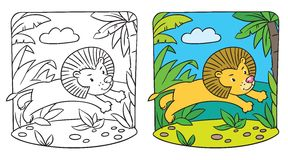 Little lion coloring book Stock Photography
