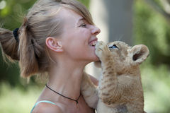 Little lion cub biting girl playing Stock Photos