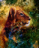 Little Lion Cub Head. Animal Painting, Abstract Stock Images