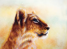 Little lion cub head. animal painting on vintage Royalty Free Stock Image
