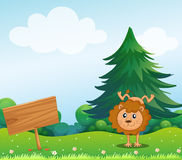 A little lion in the hill with a wooden signboard Royalty Free Stock Photo