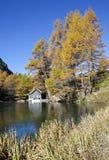 Little log cabin by Palpuogna Lake Royalty Free Stock Photos