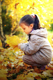 The little lovely girl with autumn leaves Stock Photos