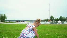 The little lovely girl collects flowers on a green meadow at the river. stock footage
