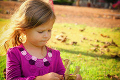 Little lovely girl playing on the grass in the park. filtered image. Royalty Free Stock Images
