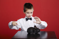 Little magician with rabbit. Little funny magician with rabbit studio shot Stock Images