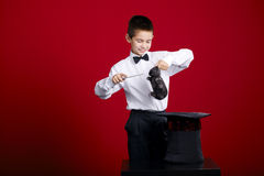 Little magician with rabbit Royalty Free Stock Images