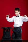 Little magician with rabbit Royalty Free Stock Photo