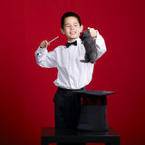 Little magician with rabbit Stock Photography