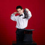 Little magician with rabbit Stock Image