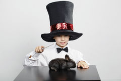 Free Little Magician With Rabbit Stock Photos - 35721183