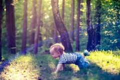 Little man boy in forest crawling stock photo