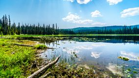Little McGillivray Lake, near Sun Peaks in British Columbia, Canada royalty free stock photos