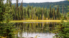 Little McGillivray Lake in the Shuswap Highlands. In central British Columbia with surrounding trees reflecting on the water stock photo