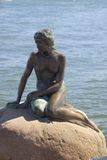The Little Mermaid. Statue of The Little Mermaid in Copenhagen Royalty Free Stock Photos