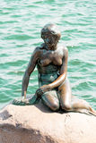 The Little Mermaid is a bronze statue by Edvard Eriksen, depicti Stock Photos
