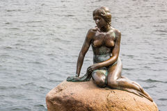 The Little Mermaid is a bronze statue by Edvard Eriksen, depicting a mermaid. The sculpture is displayed on a rock by the watersid Royalty Free Stock Image
