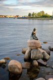 The little mermaid statue in Copenhagen Stock Images