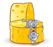 Little miсe on cheese Stock Photography