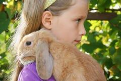 little min kanin Royaltyfri Fotografi