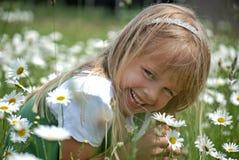 Little Miss Daisy Stock Image