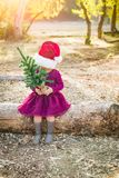 Little Mixed Race Young Baby Girl Holds a Christmas Tree. Cute Mixed Race Young Baby Girl Having Fun With Santa Hat and Christmas Tree Outdoors On Log stock photography