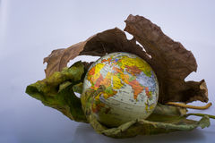 Little model globe placed between two Autumn leaves Royalty Free Stock Image