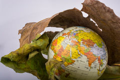 Little model globe placed between two Autumn leaves. Little model globe placed between two large Autumn leaves Royalty Free Stock Image