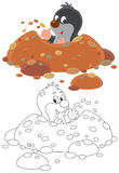 Mole. Little mole digging a hole, vector clip-art on a white background Royalty Free Stock Photo