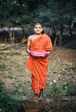 Little Monk in Dambulla royalty free stock images