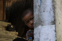 Little monk. In Tiksey monastery. Ladakh stock image