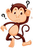 Little monkey looking confused Stock Photos