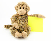 Little monkey with note pad. Little monkey with yellow note pad, announcement Stock Photos