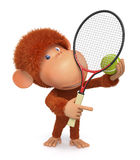 The little monkey plays tennis Royalty Free Stock Photo