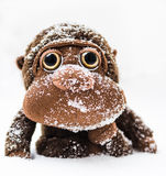 Little monkey plush freezing covered by snow Royalty Free Stock Photo