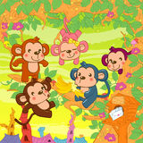 Little monkeys Royalty Free Stock Photo