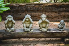4 little monkeys with a riddle stock photography