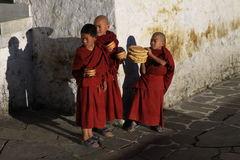 Little monks with breakfast. Early breakfast after morning puja in Tawang monastery stock photo