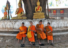 Little Monks Stock Photos