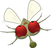Little mosquito.Cartoon Stock Image